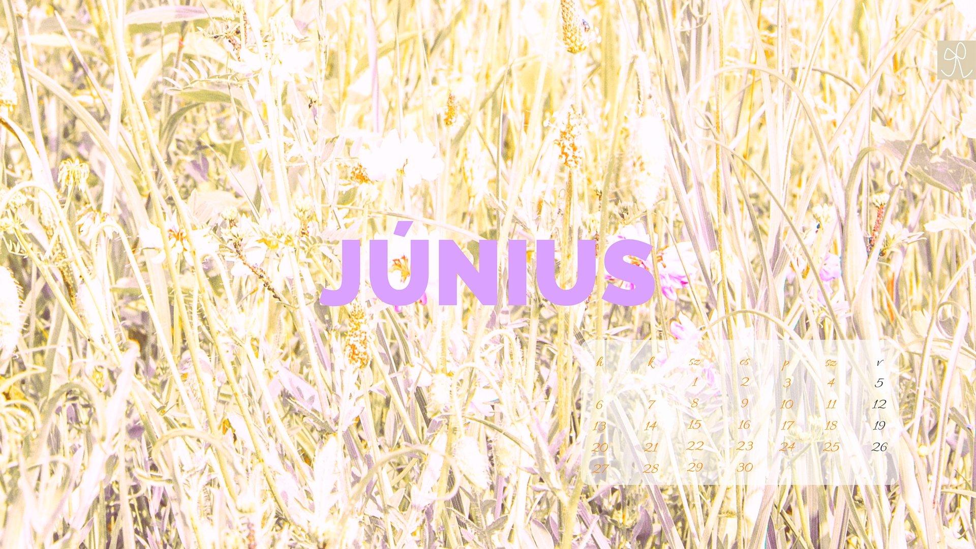 junius(3)