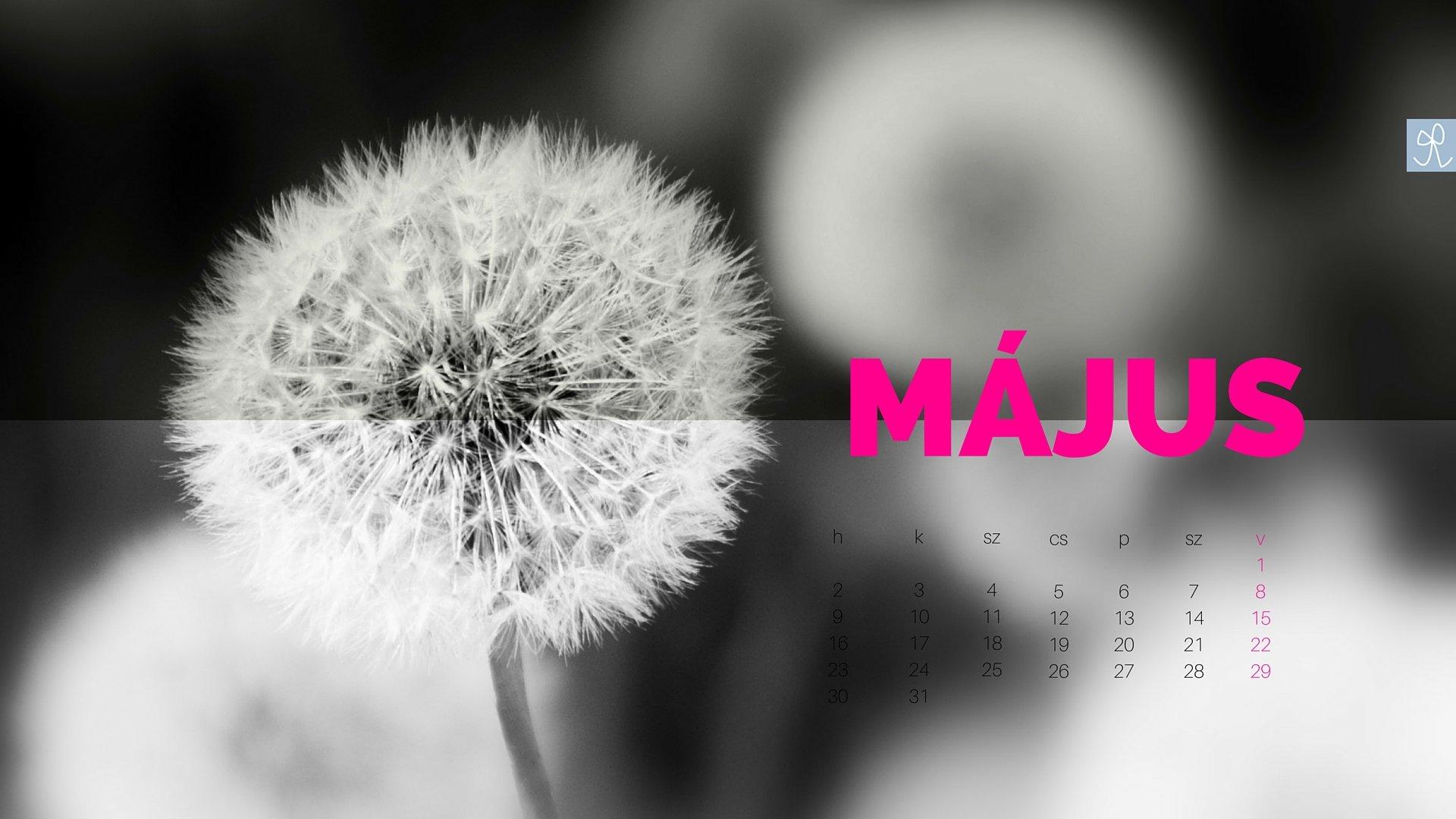 masni_2016_169